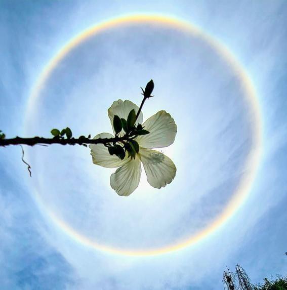 Sun Halo 2 Karnataka Districts